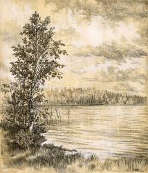 Peninsula of lake Kapujarvi by Valentina-Mustajarvi