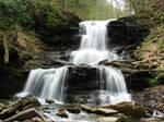 PA State Parks: Ricketts Glen