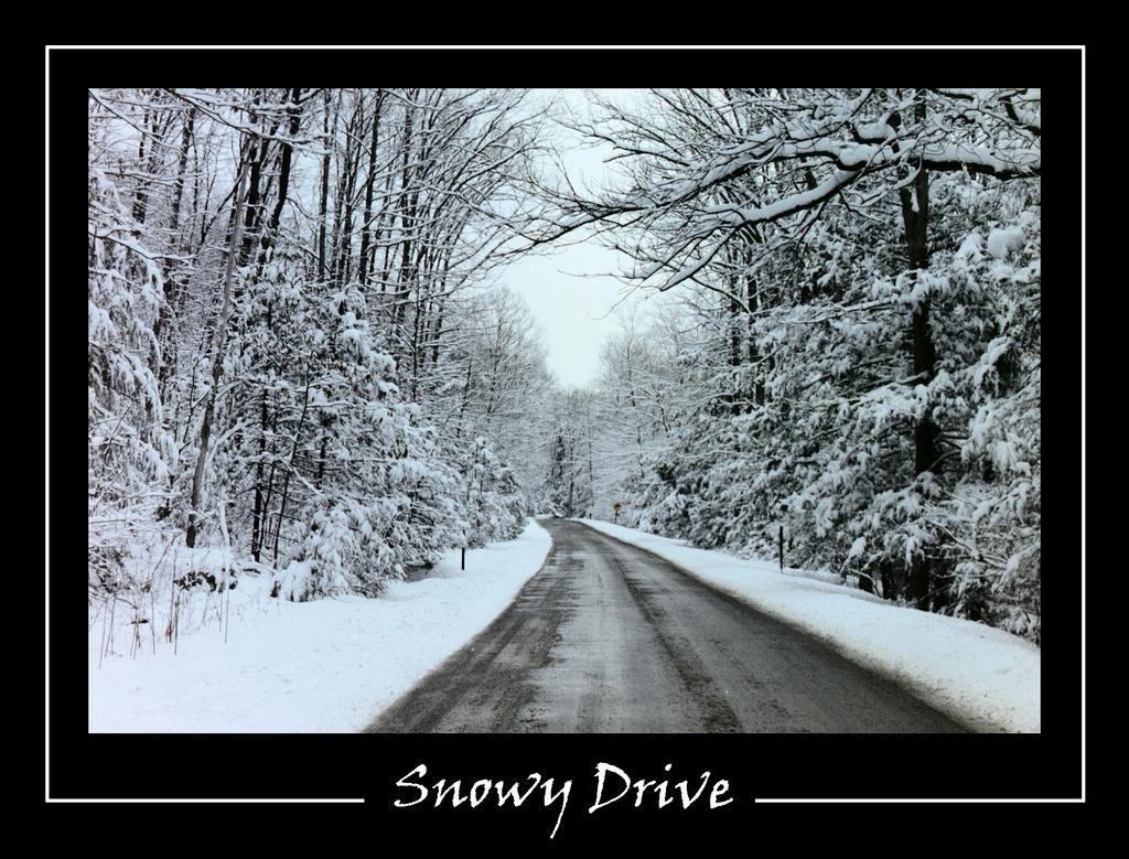 Snow by arkansawyer