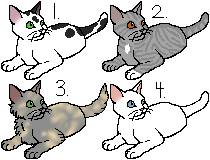 Needletail x Spider Paw // Litter 262 by sn0wadopts