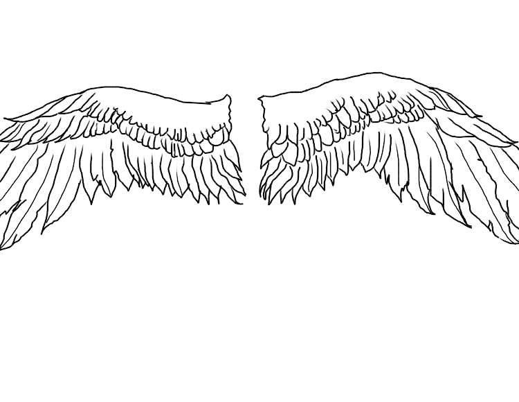 wings simple by Kashi-kun