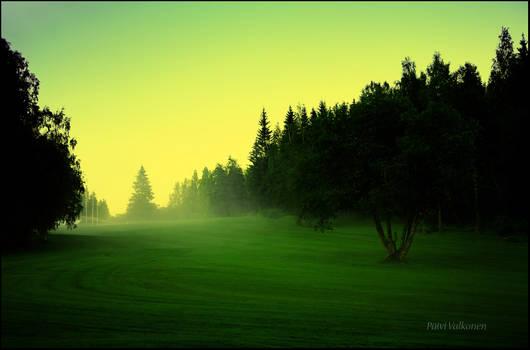 Foggy green light..