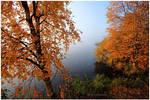 Fall again.. III