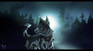 .: Nightlight :.