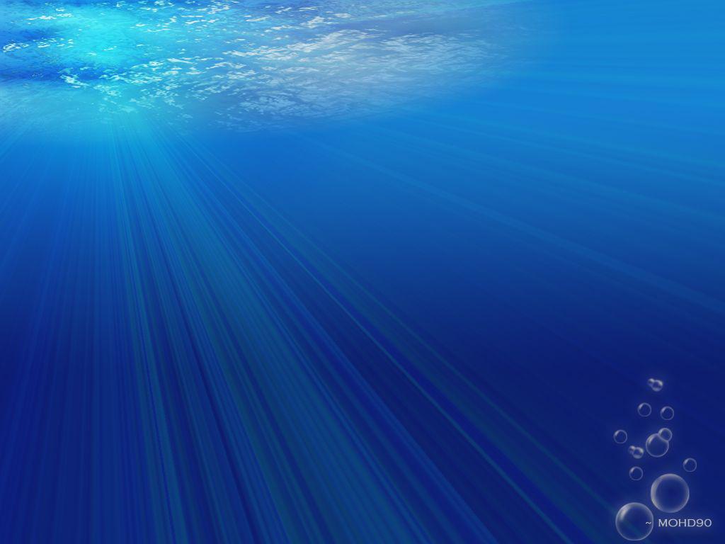 Under The Sea 114503480
