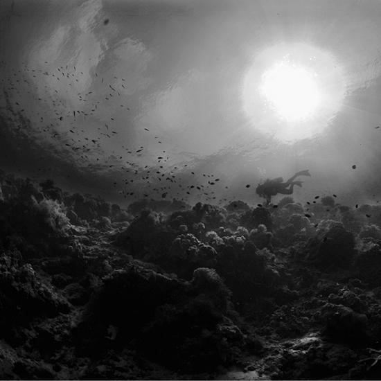ocean 12 by Hengki24