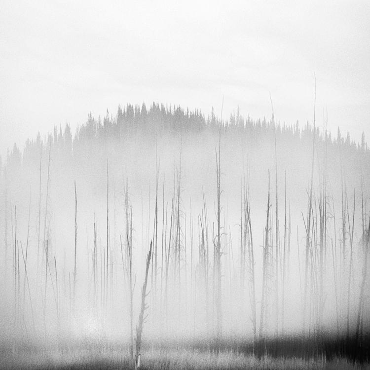 mist 25 by Hengki24