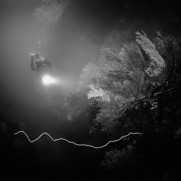 ocean 99 by Hengki24
