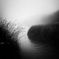 mist 75 by Hengki24