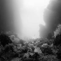 the passage by Hengki24