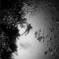 silhouette by Hengki24