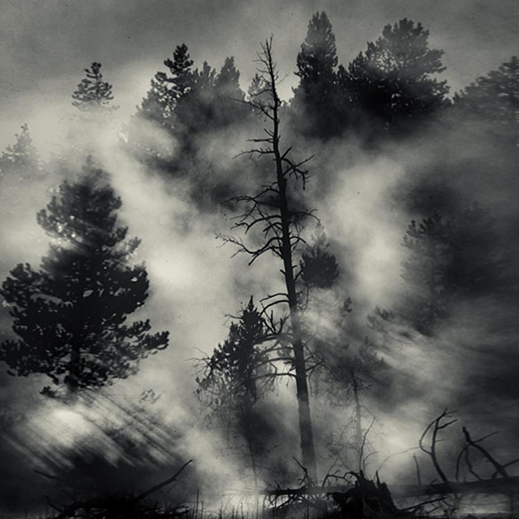 mist 96