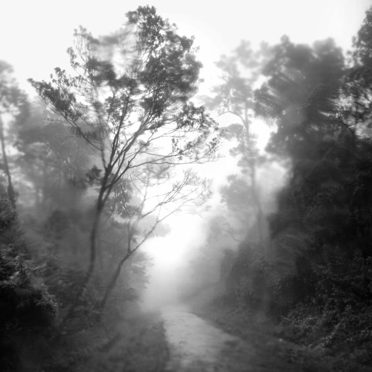 rain 21 by Hengki24