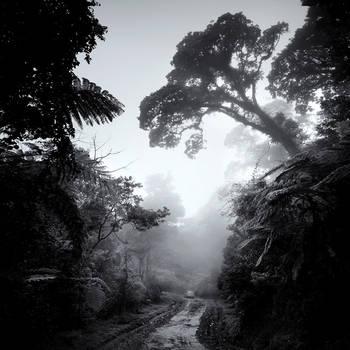 mist 110 by Hengki24