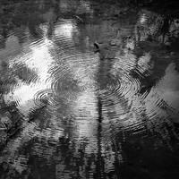 circle by Hengki24