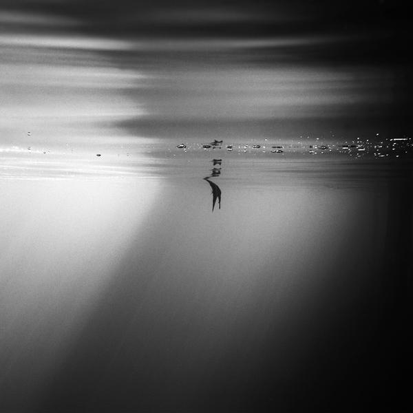 ocean 176 by Hengki24