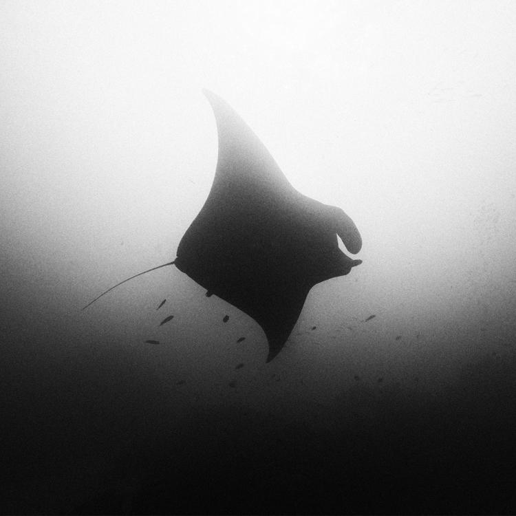 ocean 177 by Hengki24
