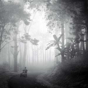 mist 148
