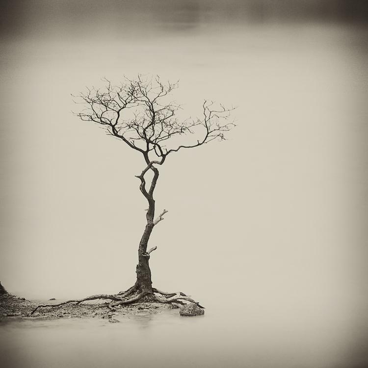 mist 172 by Hengki24