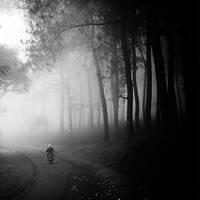 Coming Home by Hengki24