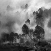 Dawn by Hengki24