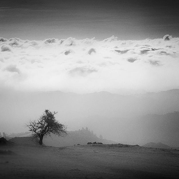 Solitary by Hengki24