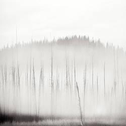 Sticks by Hengki24