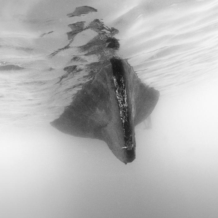 Submerge by Hengki24