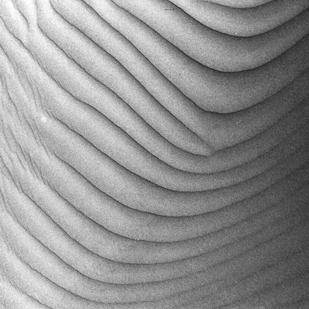 Texture by Hengki24