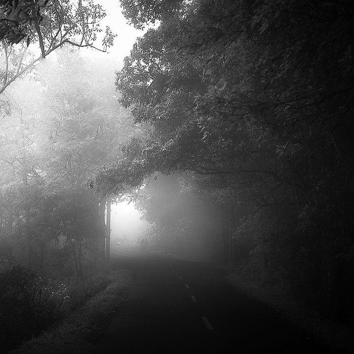 Sllepy Hollow by Hengki24
