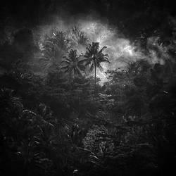 Mystic Forest by Hengki24