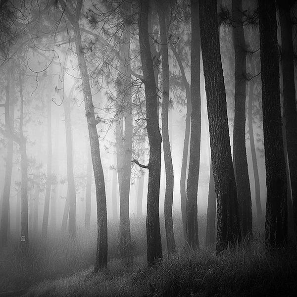 Mist by Hengki24