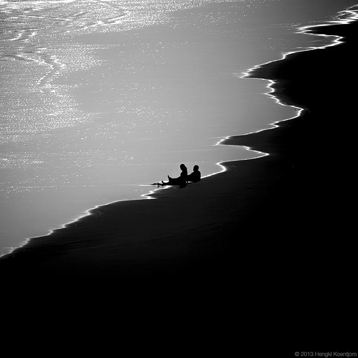 Love Birds by Hengki24
