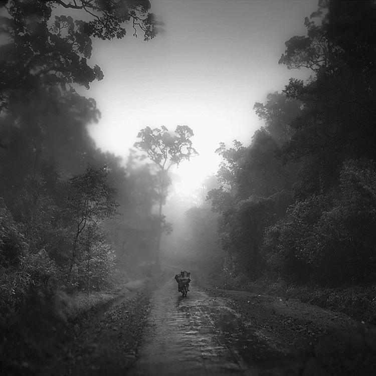 Ciwidey Highland by Hengki24