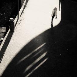 Light Shadow II by Hengki24