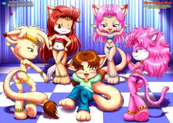 Angel's Harem Girls
