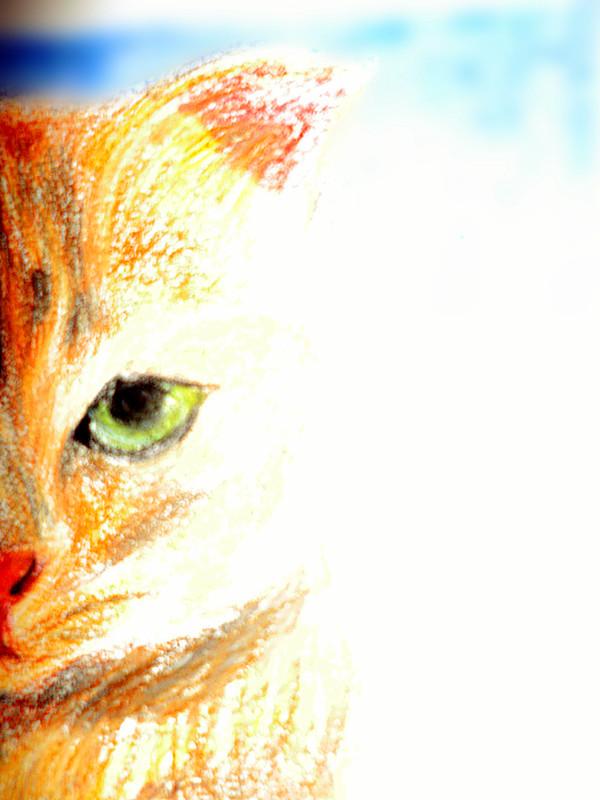 midori-maychan's Profile Picture