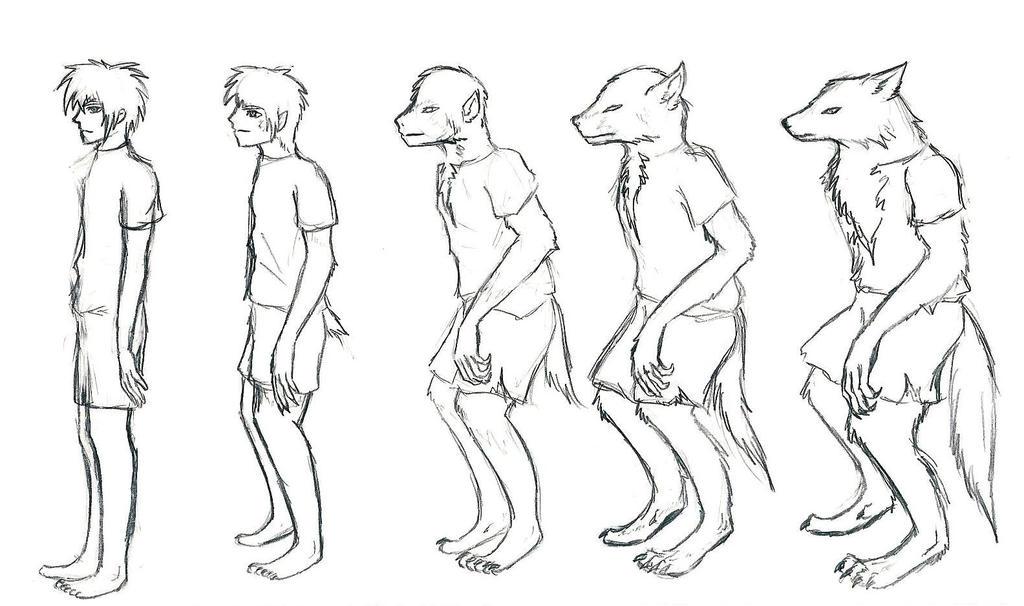 Werewolf Transformation Animation Werewolf Transformation II by