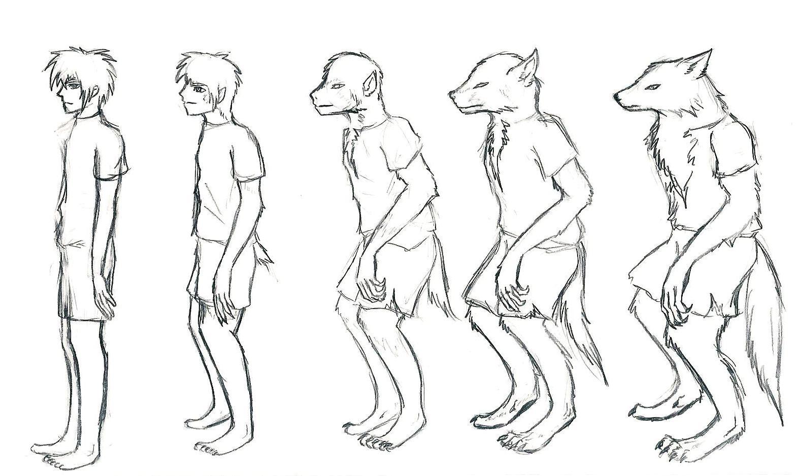 Werewolf Transformation Animation - YouTube  Werewolf Transformation Animation
