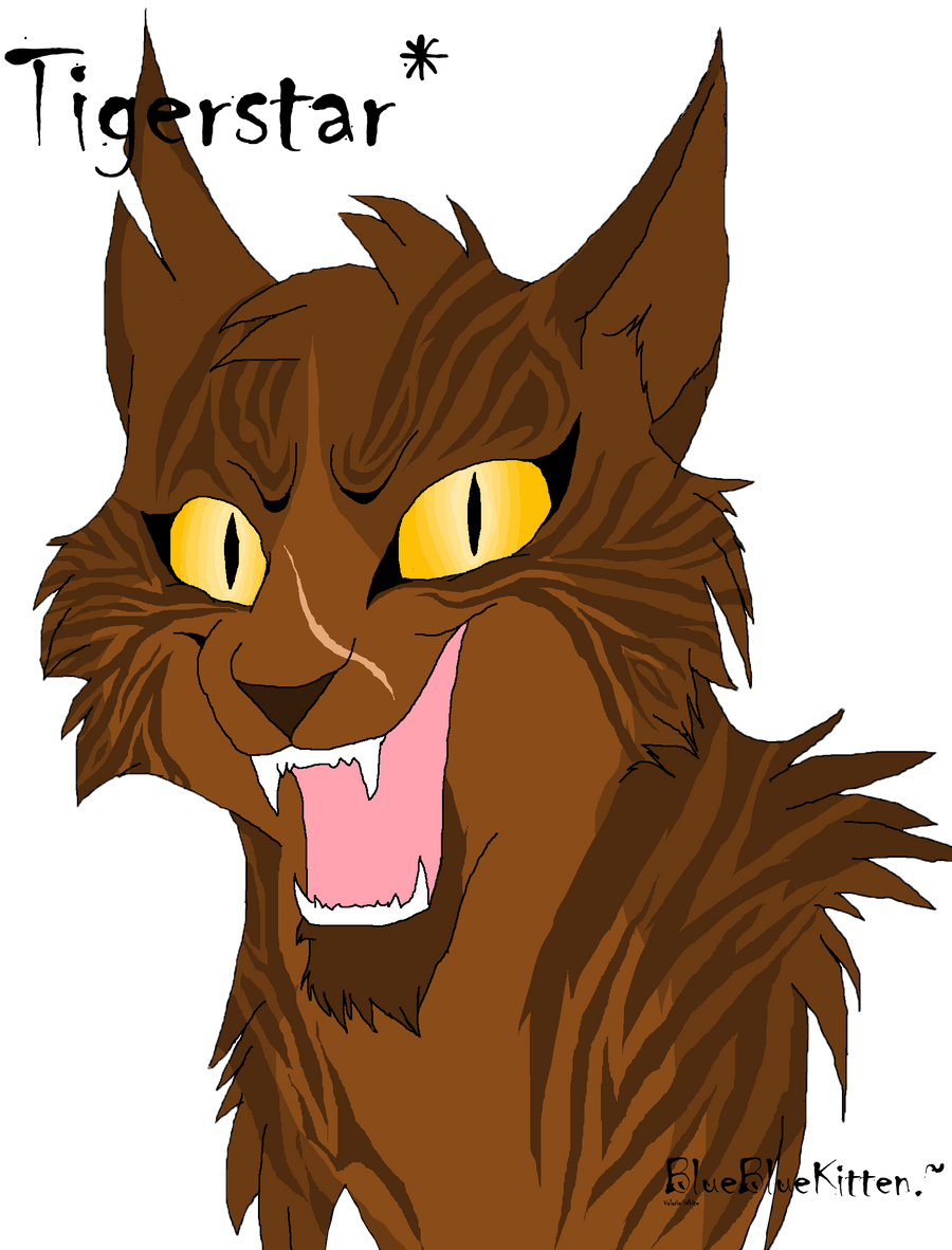 In Warrior Cats Hwere To Find Mores