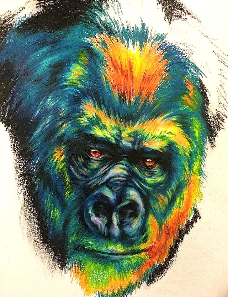 Gorilla by DirtPigeon