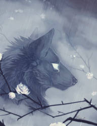 Rain. by Remarin