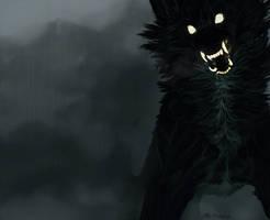 Blackdog.