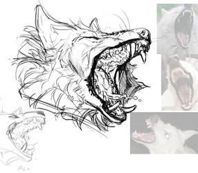 Boofwoof.sketch