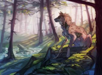 C:. Koda by Remarin