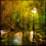 Light Of The Lamp