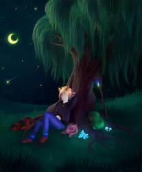 Moon shines down upon you