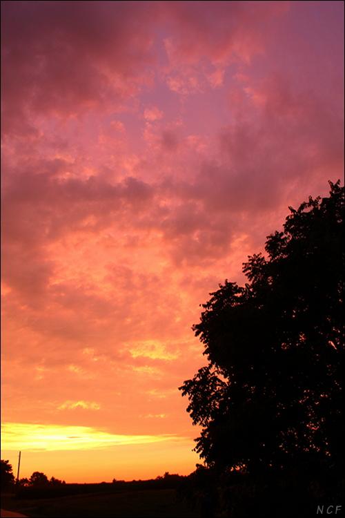sunset 6793 by piggah