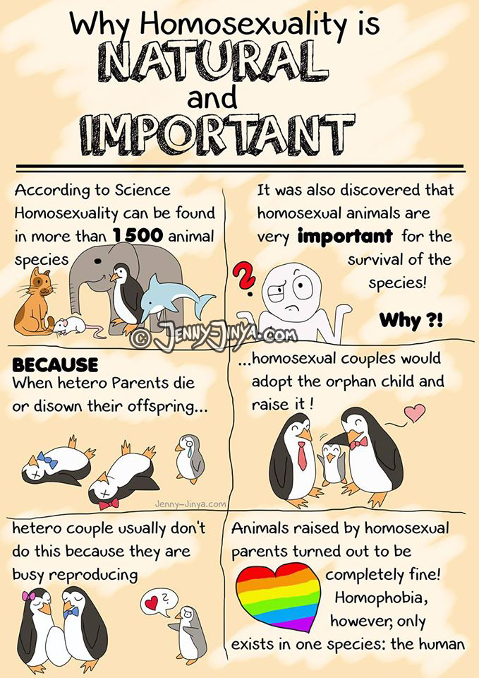 Why homosexuality is natural and important by JennyJinya