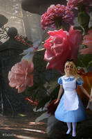 ALICE IN WONDERLAND: In a World of My Own by Princess-ValeChan